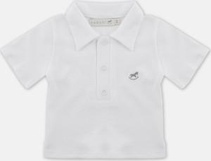 Koszulka dziecięca Farasi