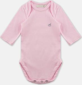 Body niemowlęce Farasi
