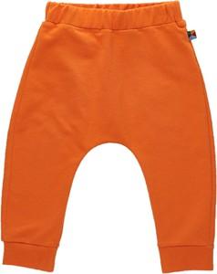 Spodnie dziecięce MyBasic