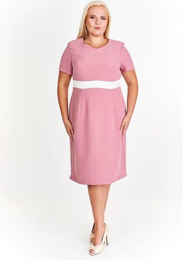 Różowa sukienka Fokus midi z okrągłym dekoltem z krótkim rękawem