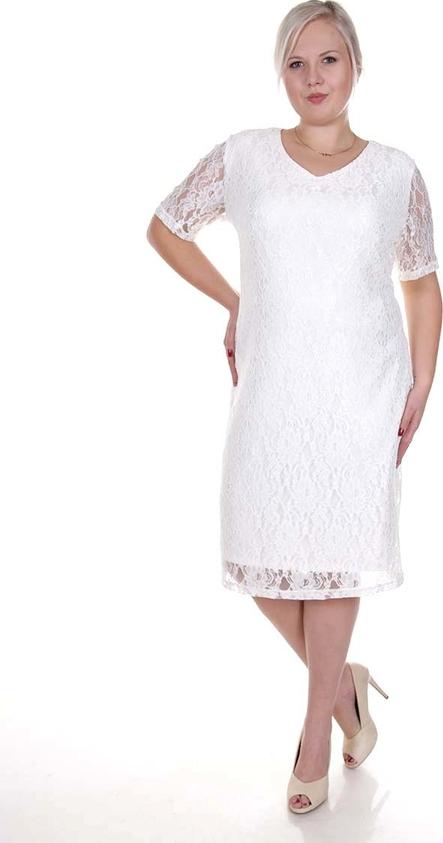 Sukienka Fokus z okrągłym dekoltem dla puszystych midi