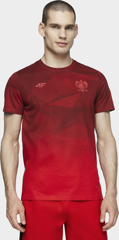 T-shirt 4F z nadrukiem z dżerseju