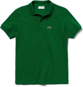 e939603dd koszulka minecraft dla dzieci - stylowo i modnie z Allani