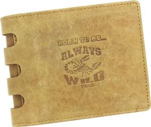 da35b840f5cfe portfele h m - stylowo i modnie z Allani