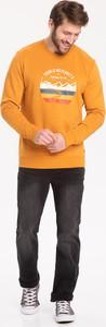 Bluza volcano.pl z bawełny w młodzieżowym stylu