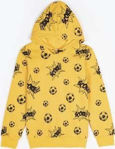 Bluza dziecięca Gate z bawełny