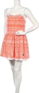 Sukienka Superdry mini