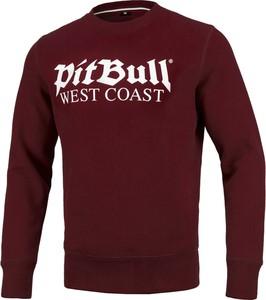 Czerwona bluza Pit Bull z weluru