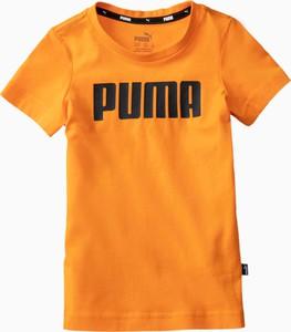 Pomarańczowa koszulka dziecięca Puma z bawełny z krótkim rękawem