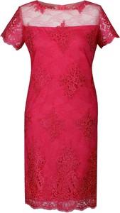 Sukienka Fokus ołówkowa z okrągłym dekoltem