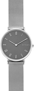 Zegarek SKAGEN - Hald SKW2677 Silver/Silver