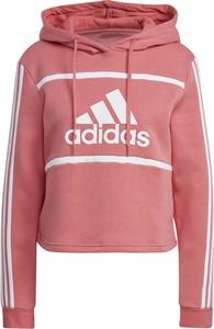 Bluza Adidas w sportowym stylu krótka