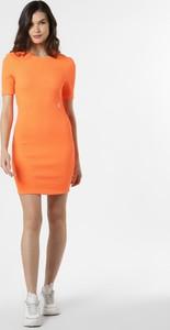 Sukienka Calvin Klein mini z krótkim rękawem z okrągłym dekoltem