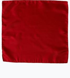 Czerwona poszetka Andrew James