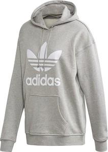 Bluza męska adidas Originals Adicolor PRM Hoody FM9913