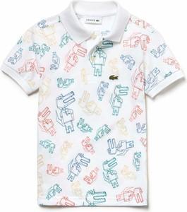 7a3327000254f9 koszulki dla dzieci - stylowo i modnie z Allani