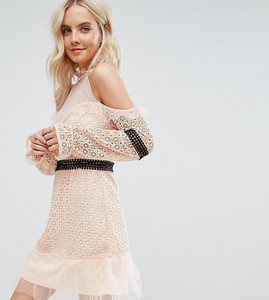 Różowa sukienka True Decadence Petite