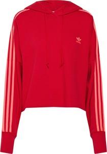 Czerwona bluza Adidas Originals krótka z dresówki