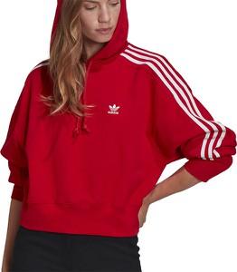 Bluza Adidas w sportowym stylu z bawełny krótka