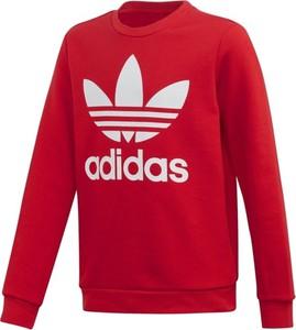 Czerwona bluza dziecięca Adidas Originals