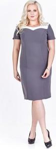 Sukienka Fokus ołówkowa