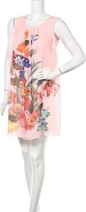 Sukienka Nuova Moda mini