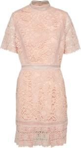 Sukienka True Decadence mini z krótkim rękawem na co dzień