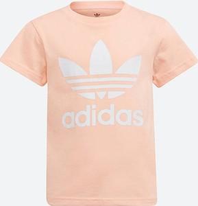 Pomarańczowa bluzka dziecięca Adidas Originals z krótkim rękawem z bawełny
