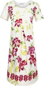 Sukienka Fokus z krótkim rękawem w stylu glamour z okrągłym dekoltem