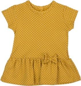 Bluzka dziecięca Nicol z krótkim rękawem dla dziewczynek w groszki