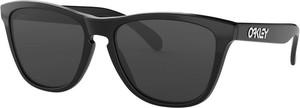 Oakley Sunglasses Frogskins OO9013