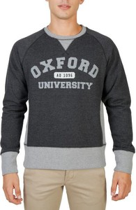 Bluza Oxford University w młodzieżowym stylu