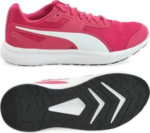ef4ea12879168 buty damskie puma - stylowo i modnie z Allani