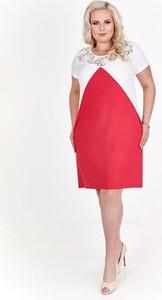 Sukienka Fokus rozkloszowana z krótkim rękawem z okrągłym dekoltem