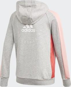bluzy chłopięce adidas stylowo i modnie z Allani
