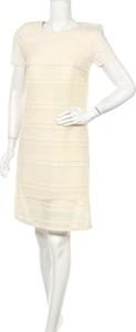 Sukienka ATOS LOMBARDINI prosta w stylu casual