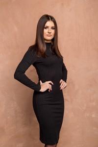 Sukienka Ola Voga dopasowana z długim rękawem