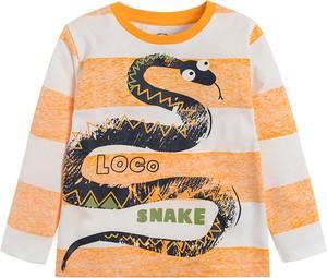 Koszulka dziecięca Cool Club w paseczki z bawełny dla chłopców
