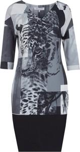 Sukienka Molton z okrągłym dekoltem z długim rękawem