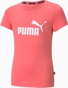 Bluzka dziecięca Puma z krótkim rękawem z bawełny dla dziewczynek