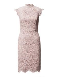 Różowa sukienka Chi Chi London z okrągłym dekoltem
