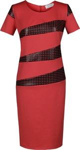 Czerwona sukienka Fokus midi z dzianiny z krótkim rękawem