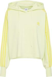 Żółta bluza Adidas Originals w młodzieżowym stylu