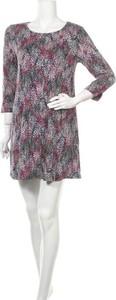 Sukienka Joules mini z długim rękawem z okrągłym dekoltem