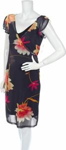 Sukienka International Newport Group z dekoltem w kształcie litery v prosta