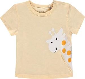 Odzież niemowlęca bellybutton dla chłopców