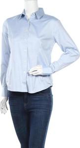 Niebieska koszula James Harvest z bawełny