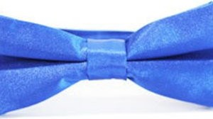 Niebieska mucha EDYTA KLEIST