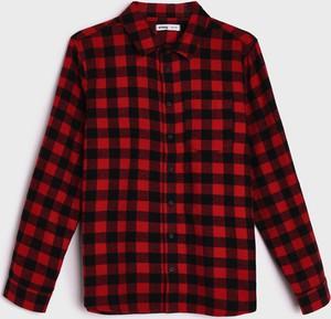 Czerwona koszula dziecięca Sinsay z bawełny