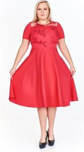 Sukienka Fokus rozkloszowana z okrągłym dekoltem